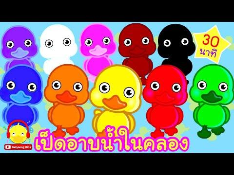 เพลงเป็ดอาบน้ำในคลอง เป็ด10สี ก๊าบๆ Colour Duck song ♫ เพลงเด็กอนุบาล indysong kids