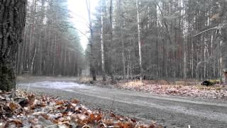 Гомельщина 2015 Mitsu Lancer EVO Вылет с трассы