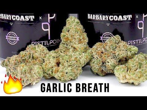 GARLIC BREATH STRAIN REVIEW - YouTube