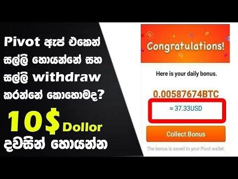Earn Money With Pivot App - Sinhala Explain