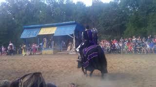 Knights Fight - Renaissance Fair
