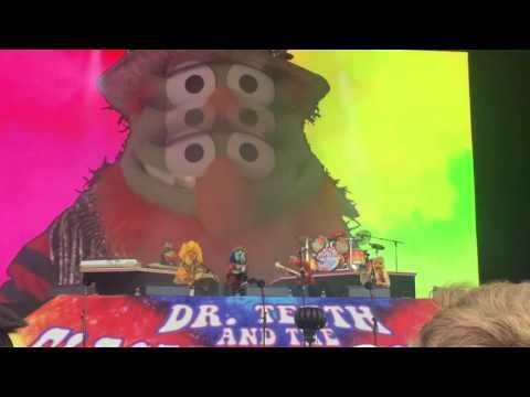 Dr. Teeth at Outsidelands