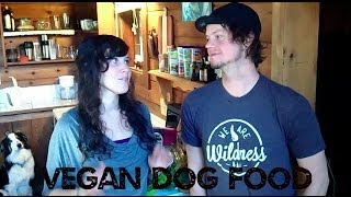 How To Feed Your Dog Vegan