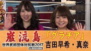 2017年1月3日、舞浜アンフィシアターで行われる『巌流島・世界武術団体...