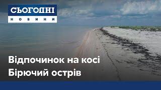 День на острові Бірючий: незаймана природа, дикі тварини та чисте море