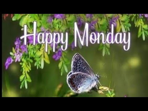 Good Morning Monday Images Beautiful Images Wallpapers Images