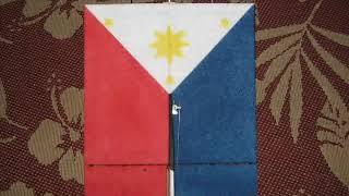 Philippine Flag Pizza Box Rc Plane, Lupang Hiniran