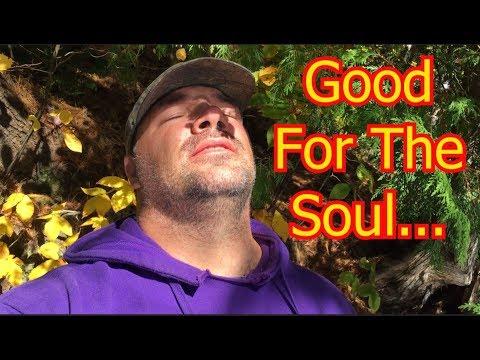 AMAZING!!!   Tahquamenon Falls State Park   LOWER FALLS   Paridise, MI   Fulltime Living   10/11/17