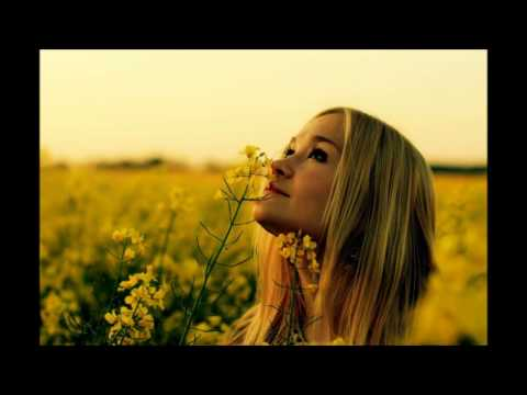 The Aston Shuffle - Won't Get Lost (Flume Remix) | HD
