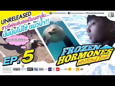 ชาวโฟรเซ่นฮอร์โมนฮาลั่น...นั่นมันไม่ใช่ แมวน้ำ Frozen Hormones