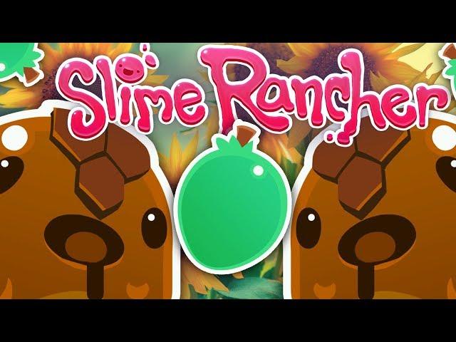Mint Mango & Honey Slime Location! | Slime Rancher #5