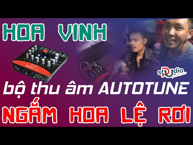 Ngắm hoa lệ rơi phiên AUTO TUNE của anh chàng LẮP ÂM THANH DẠO  - COMBO ICON UPOD TRƯỜNG LINH VOX