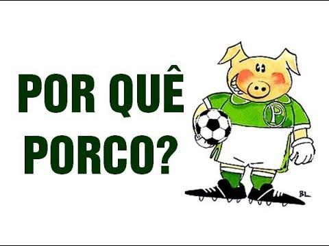 Porco Sorte Para O Palmeiras Azar Para O Corinthians Tudo Sobre Nosso Segundo Mascote