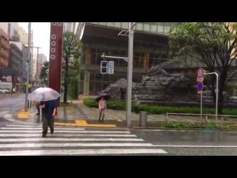 How Typhoon Phanfone is affecting Tokyo as of 2pm, Sunday, Oct 5, 2014