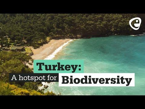 Turkey: A biodiversity hotspot
