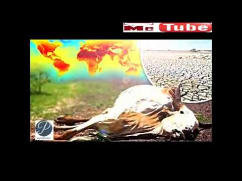 Earth Warming up, Pole Shifting, Increased Solar Activity, Solar flares - Whats Happening to Earth?