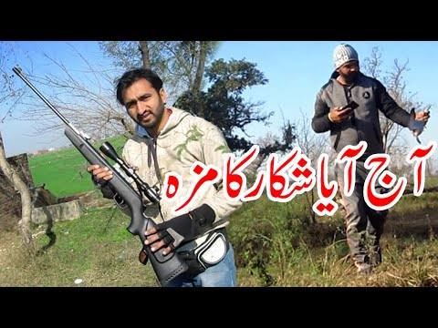 Hunting In Pakistan 2020 | Dove Hunting In Pakistan With Friends | Hunting 2020 Batter Than Chicken
