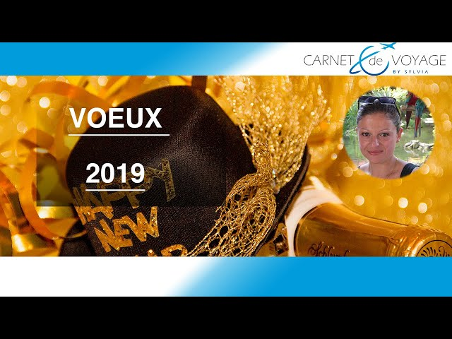 Meilleurs Voeux pour 2019 (+ bêtisier) - Bonne année 2019 - Happy new year !