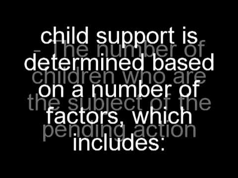 Child Support Calculator How To Use It Youtube