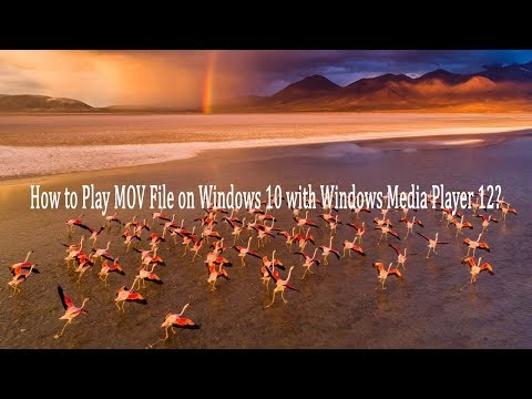 How To Play MOV File On Windows 10 With Windows Media Player 12?