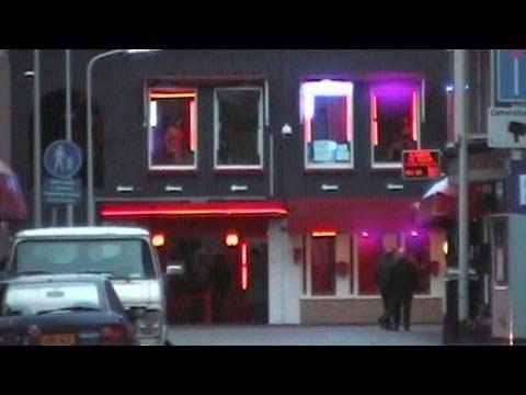 Adult Guide Hague