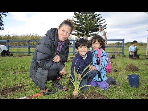 tokomaru-bay-tree-planting-hatea-a-rangi-school