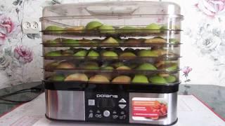 видео Как выбрать сушилку для овощей и фруктов за 2017 год
