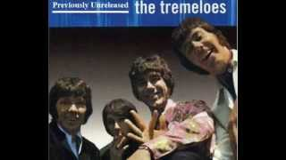 The Tremeloes - The Lady