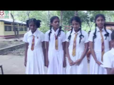 Song    World Environment Day 2015 Official Video