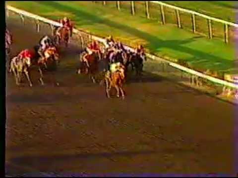 Watch Wendy Invitational Handicap Bay Meadows Racetrack Nov. 3th 1985