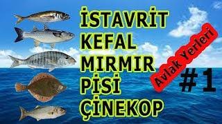 İSTAVRİT KEFAL MIRMIR ÇİNEKOP PİSİ AVLAK YERLERİ :))Balık Avı ve Teknikleri