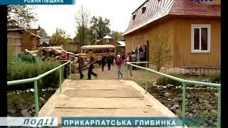 Як живуть у Прикарпатській глибинці