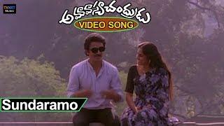 Amavasya Chandrudu  Movie - Songs | Sundaramo Sumaduramo Video Song  | TVNXT Music
