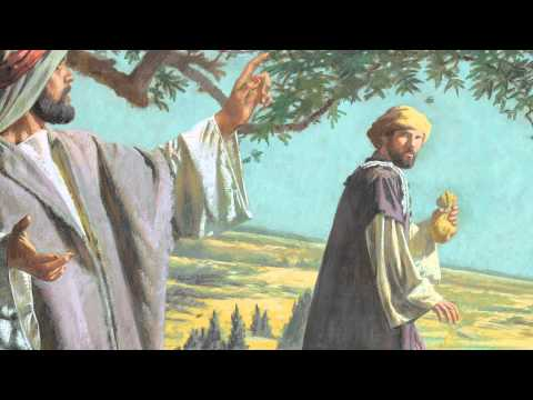 Capítulo 58: Simón y el sacerdocio