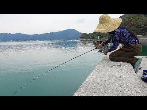 漁港で色々なライトルアー使って釣りしてみた