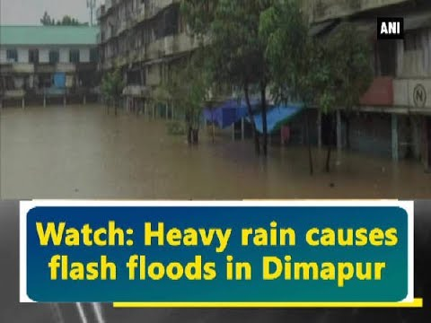 Watch: Heavy rain causes flash floods in Dimapur - ANI News