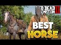 Red Dead Redemption 2 Best Horse! How To Get Arabian Rose Grey Bay Horse! RDR2 Best Horse Location