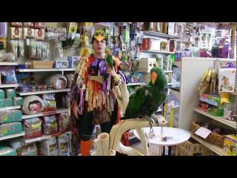 Papageno in Oakland - West Edge Opera