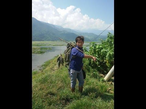 Fishing/Hunting in Nepal | Lakeside | Pokhara
