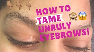 HOW TO TAME UNRULY EYEBROWS   Brow Shaping   Eyebrow Tutorial   Eyebrow Makeup   BROWS