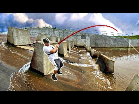 FLASH FLOOD Draws GIANT PB Fish To Urban Spillway!!! (SNAPPED 65lb Braid)