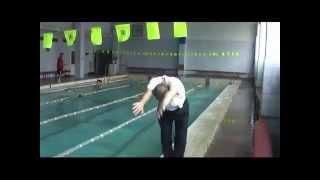 Техника+плавания+c+Постовым+А И +Дельфин
