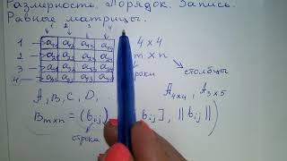 матрица. Элементы Порядок Размерность. Равные матрицы