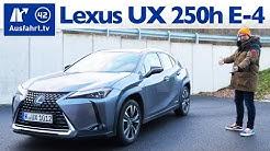 2020 Lexus UX 250h Luxury Line E-FOUR (ZA1) - Kaufberatung, Test deutsch, Review, Fahrbericht