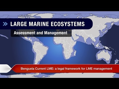 Week 6: Ms Prudence Galega on the Guinea Current Large Marine Ecosystem (GCLME)