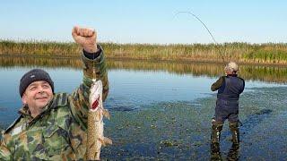 Астраханська рибалка. ПОКЛЬОВКА НА КОЖНОМУ ЗАКИДАННІ Щука і карась.Частина 1.