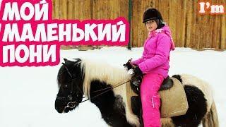 Маленький пони 🦄 катание на лошадях конный спорт