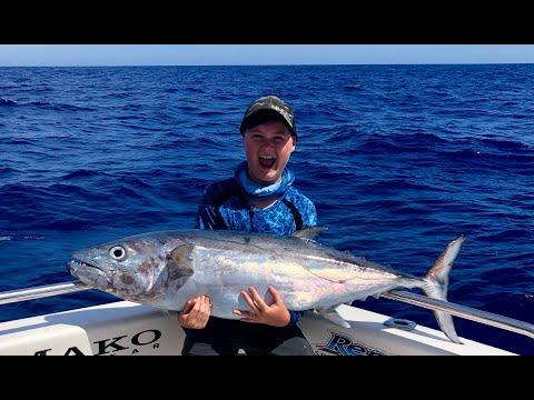 IFISH Airlie Beach Dogtooth Tuna