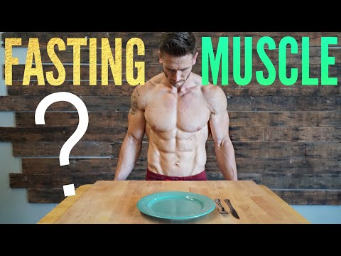 Intermittent Fasting & Muscle Loss: Why Fasting Does Not ...