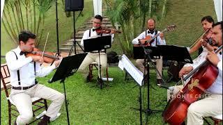 Baixar Felicidade - Marcelo Jeneci - Instrumental   Monte Cristo Coral e Orquestra Para Casamentos